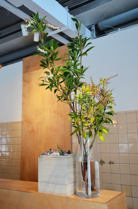 Fujin Tree Landmark 13.JPG