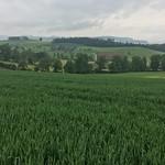 2018_05_16 _Luzernerhinterland_Beat  (162)
