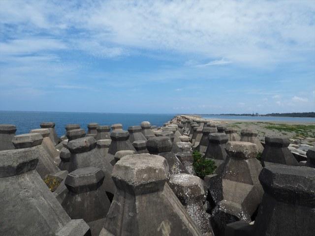 漁光島 (7)