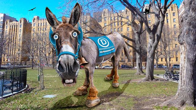 Democratic Donkey - Caricature