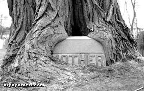 اغرب المقابر في العالم (19)