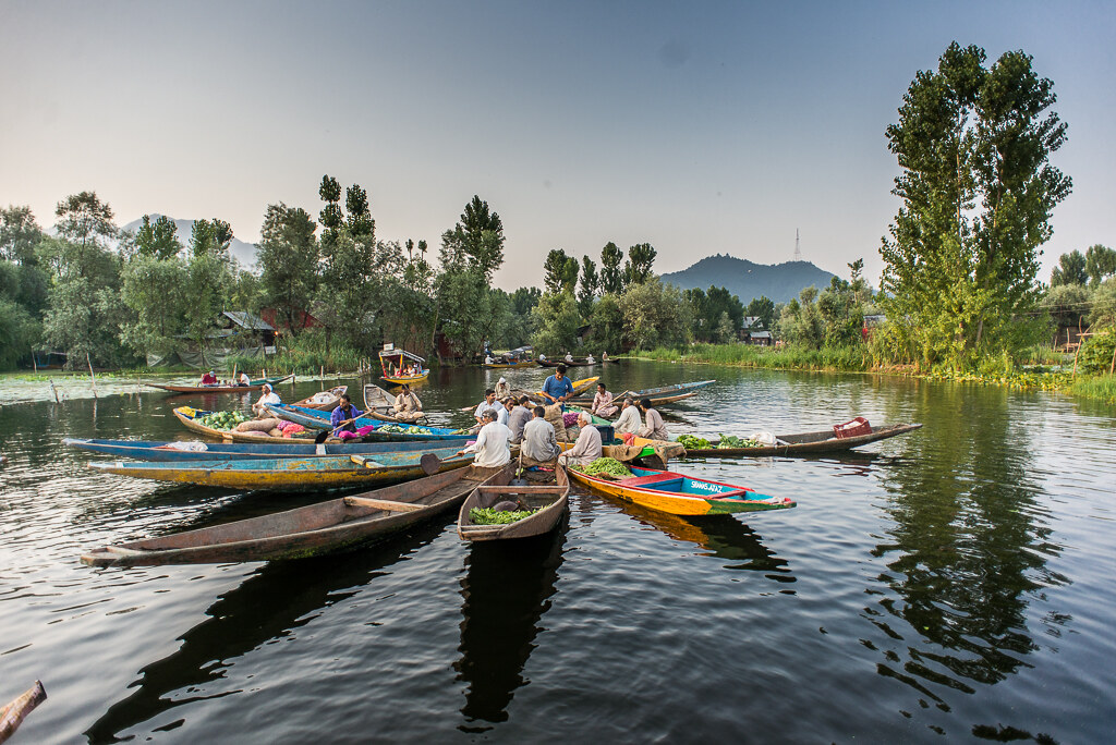 FloatingMarketDalLakeSrinagar_015