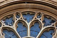 pigeons & poo on God's house