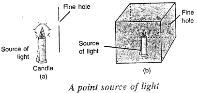 Selina Concise Physics Class 6 ICSE Solutions - Light 8
