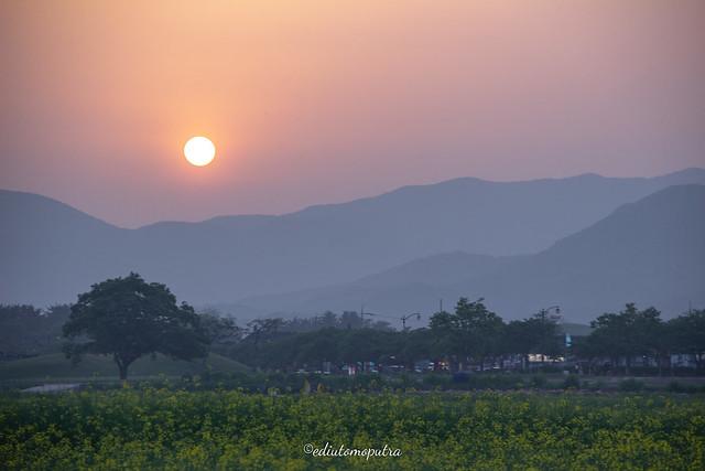 Sunset In Gyeongju