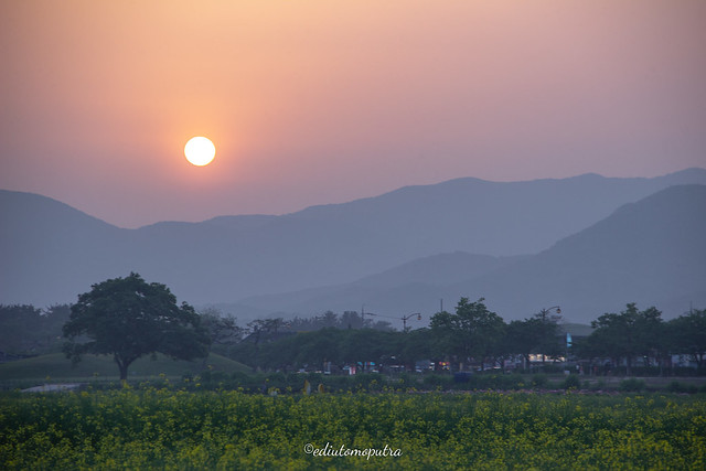 Sunset In Gyeongju