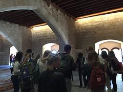 Palma Marinera, Catedral i Almudaina