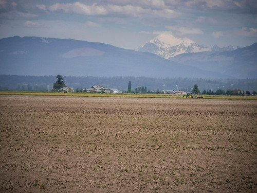 Samish Flats Fields-007