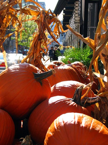 Pusateri's Pumpkins