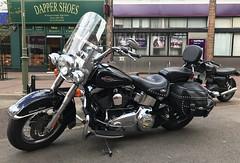 GI18-17 Easy Rider