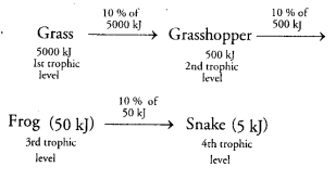 ncert-solutions-class-10th-science-chapter-15-environment-16