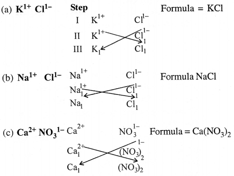 Selina Concise Chemistry Class 6 ICSE Solutions - Elements, Compounds, Symbols and Formulae 25.2