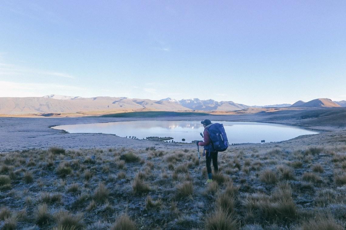 NZ_TA_180204.jpg