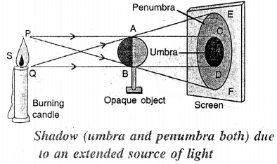 Selina Concise Physics Class 6 ICSE Solutions - Light 14.1