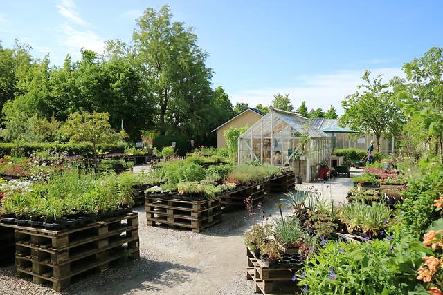 Abergs Tradgard & Café Ystad (8)