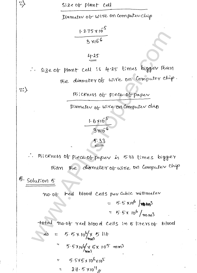 ML Aggarwal ICSE Solutions for Class 8 Maths Chapter 2