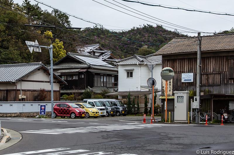 Coches de alquiler muy al estilo de Yayoi Kusama