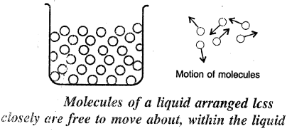 Selina Concise Physics Class 6 ICSE Solutions - Matter 10