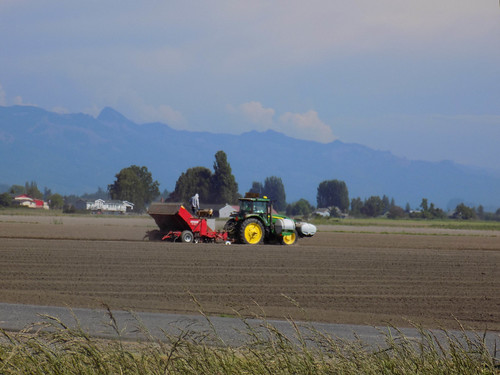 Skagit Valley Farms-003