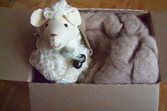 a Sheepie!