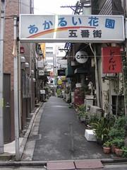 Shinjuku_rues4