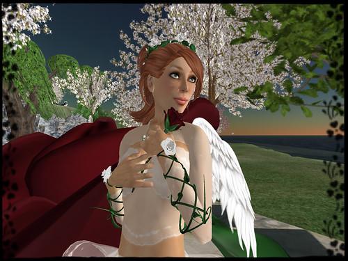 roseangel003