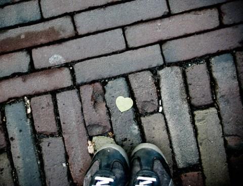 in delft liggen harten op straat!