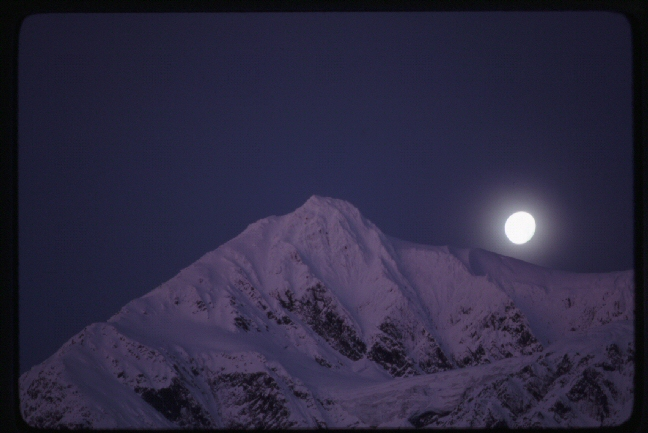 Wildman Moon Shot
