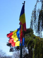 "The Romanian Flag - ""tricolorul"""