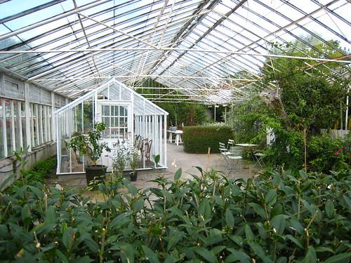 Växthus i växthus