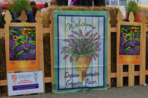 Welcome to the Lavender Festival!