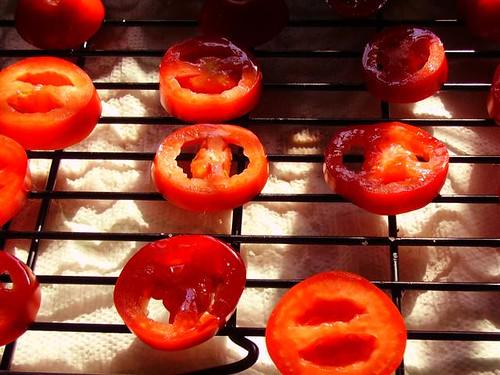 Artsy tomato shot