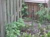 Garden-Eater
