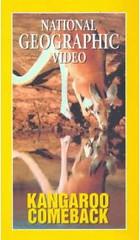Kangaroo documentary