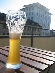 beer studies