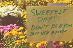 A poem for Sweetest Day