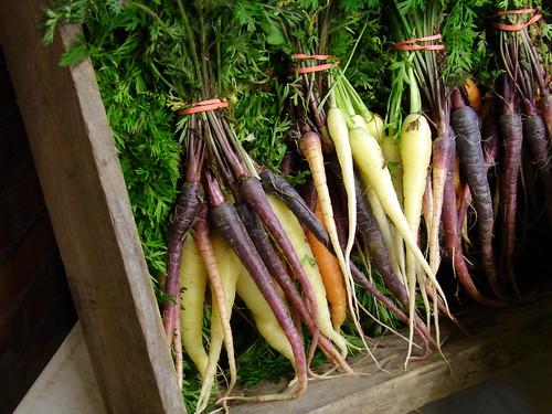 chiaroscuro carrots