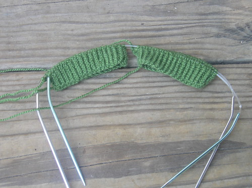 Embossed Leaves ribbing