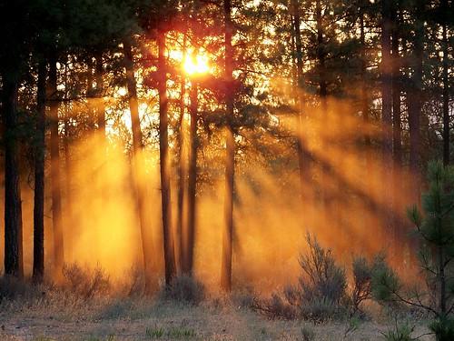 Sunrise, smoke & dust