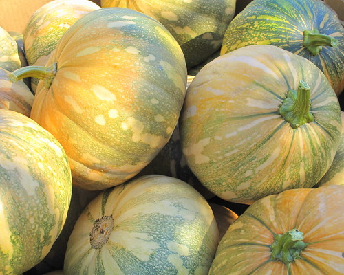 yellowandgreen pumpkins