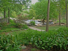 Reedy Park