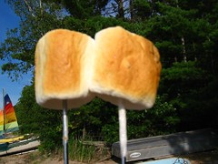 perfectly roasted marshmallows