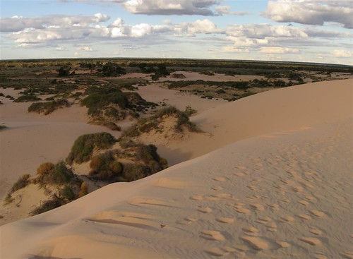 Mungo Pink Dunes (Large)