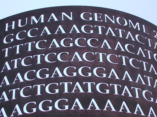 "Genome sign at Mission Bay, San Fransisco. The sign reads ""Human Genome GCCAAAGTATACTATTTCAGCCAACAT"" etc. for several lines. It is white bold text on a black background"