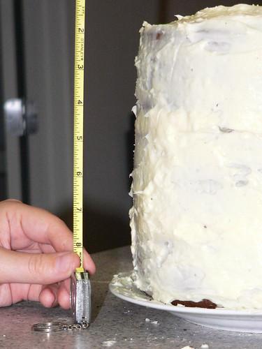 Big Ol' Pie Cake