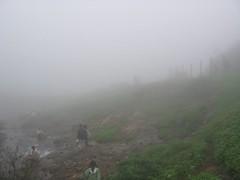 foggy evening at Tiger Hills