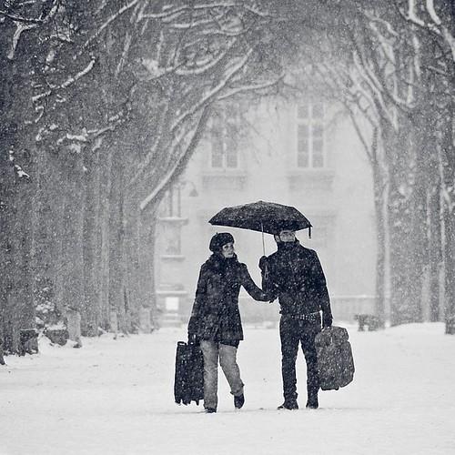 Snow - The Main Subject (Group)