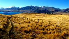 Panorama Lake Tekapo