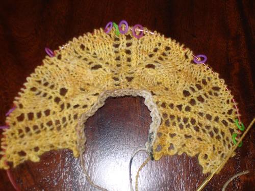 bee fields shawl 9-5-2007 10-59-07 AM