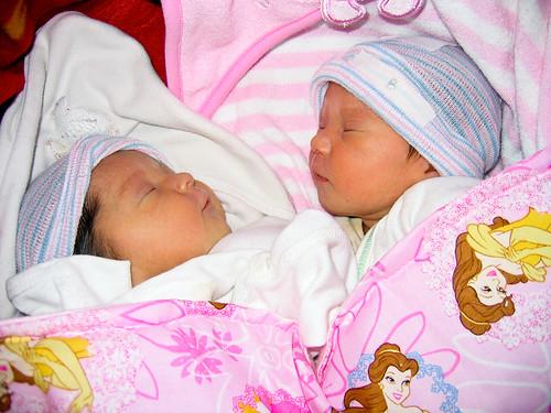 Willow and Midori